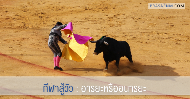 20170106_bullfight